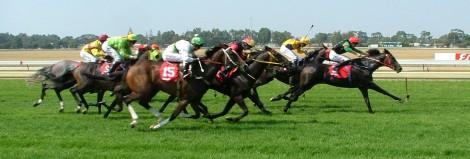 doogue-obrien-george-blog-horse-race